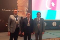 V. ŞAHİN (Azerbaycan) - 022