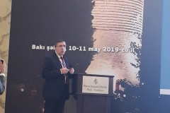 V. ŞAHİN (Azerbaycan) - 050