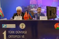 V. ŞAHİN (Azerbaycan Toplantısı) - 069