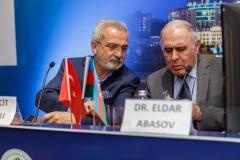 V. ŞAHİN (Azerbaycan Toplantısı) - 411